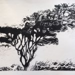 Art of Printmaking