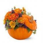 Autumn Flower Arranging workshop – Halloween inspired