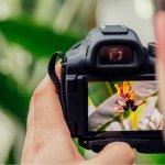 Digital SLR Photograph course