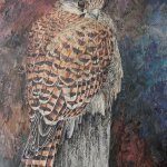 From the Air: Elysian Art Group