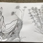 Nature & Sequence Art Project with Julie Arnall - FREE Project