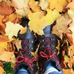 Picture This Autumn Photography Walks