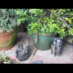 Garden sculptures2