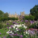 Garden painting workshop - tickets now on sale