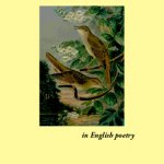 Poetry books available in Waterstones