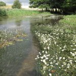 WATER: THE BIGGER PICTURE a photo competition for Hertfordshire