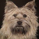 Ruth Goodman / Animal Artist