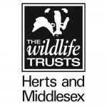 Wild at Home with Herts and Middlesex Wildlife Trust