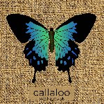 Callaloo PopUp Carnival Crowdfunding Campaign reaches its target